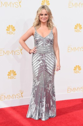 Amy+Poehler+Dresses+Skirts+Beaded+Dress+pz-ZJFPnzo7l