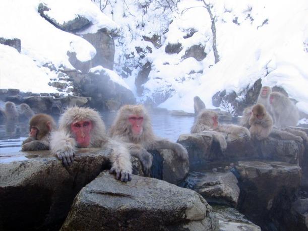 Photo by JapanGuide.com