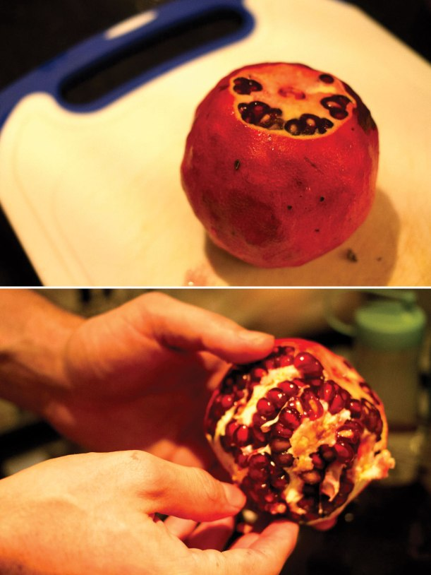 John's-Fancy-Booze---Pomegranate