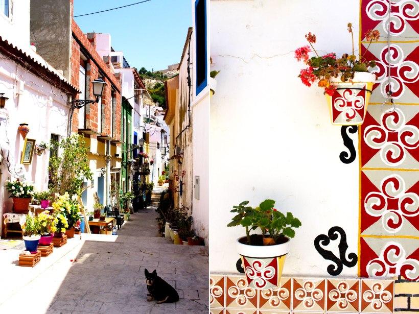 Colour-in-Alicante