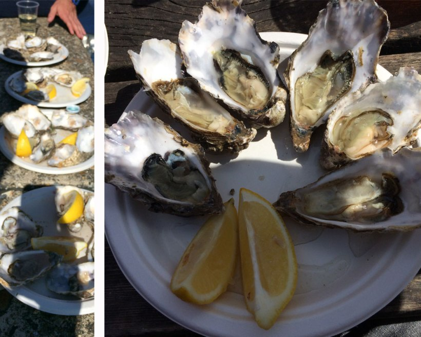 oyster-lots