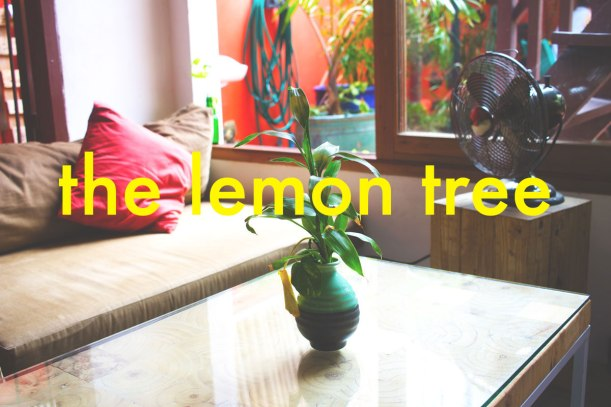 The-Lemon-Tree-Header