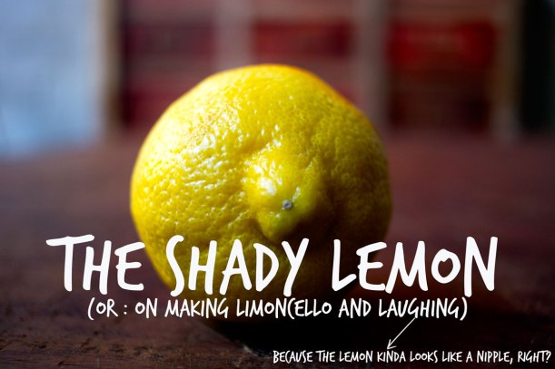 The-Shady-Lemon-Header