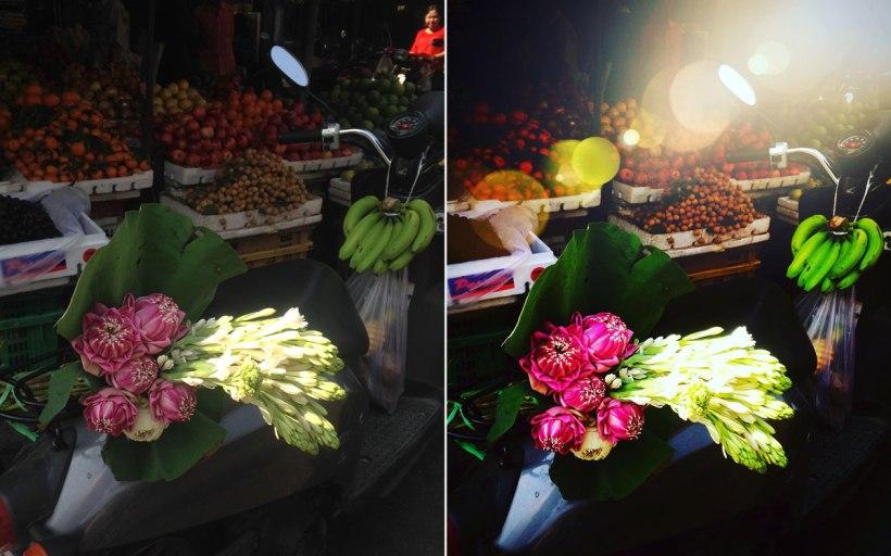 A-Colour-Story---Flowers