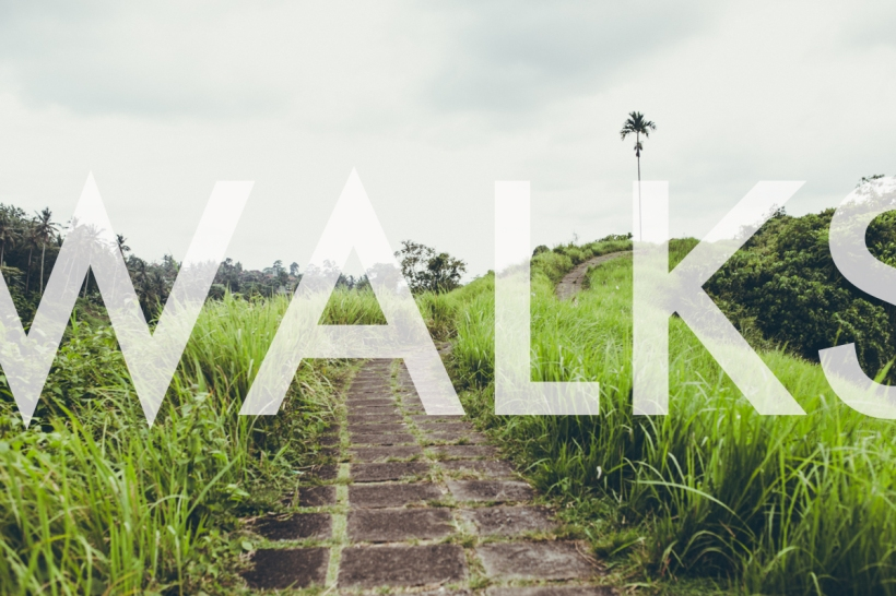 bali-walks-header