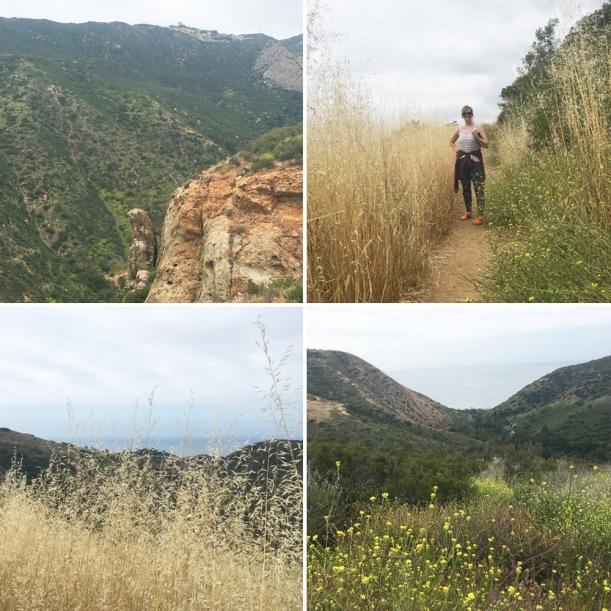 hiking grid.jpg